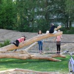 brede-school-nijmegen-buitenruimte-kinderdagopvang-kindvriendelijk-veilig-groen-1