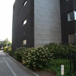 delishurck-buitenruimte-appartementencomplex-ouderen-parkachtig-modern-natuurlijk-groen-2