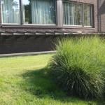 delishurck-buitenruimte-appartementencomplex-ouderen-parkachtig-modern-natuurlijk-groen-3