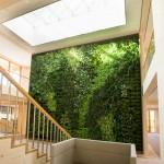 verticale-tuin-automatisch systeem-duurzaamste-kantoorpand-haelen-roermond-1