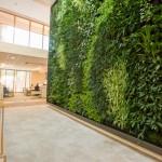 verticale-tuin-automatisch systeem-duurzaamste-kantoorpand-haelen-roermond-2