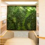 verticale-tuin-automatisch systeem-duurzaamste-kantoorpand-haelen-roermond-3