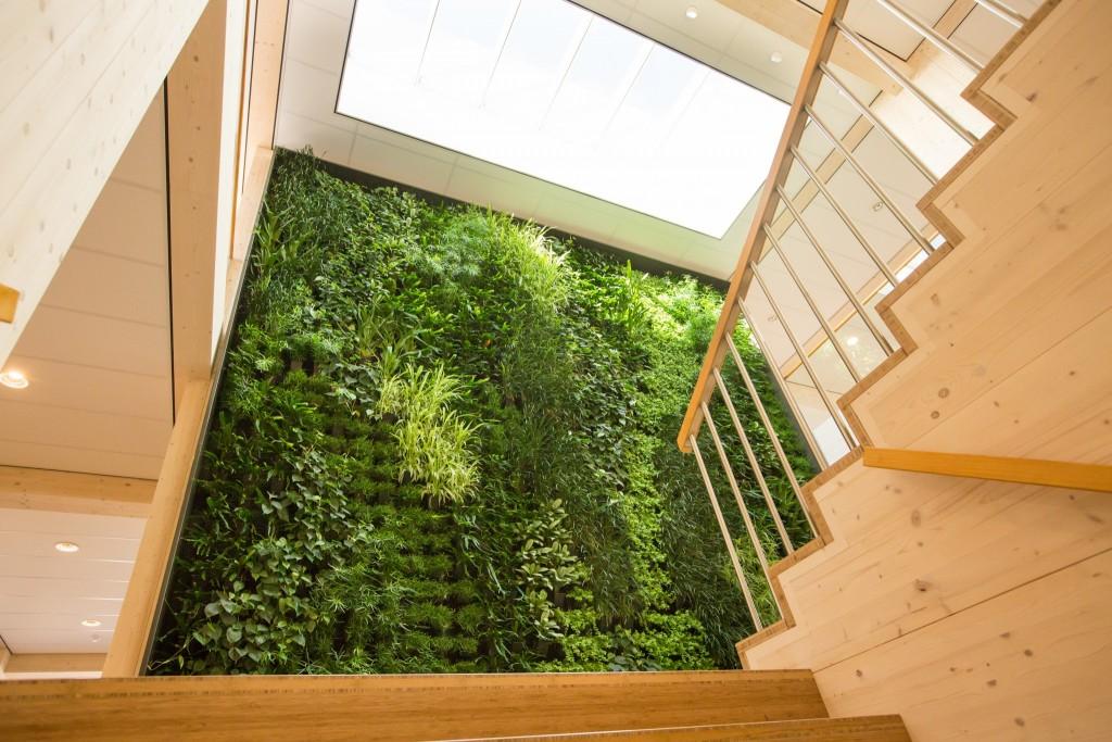 Verticale tuin meest duurzame kantoor van nederland for Verticale tuin systeem