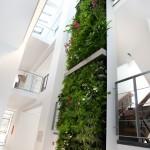 verticale-tuin-lunetzorg-eindhoven-kantoorpand-volledig-beplant-klimplanten-gevelrekken-1