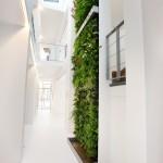verticale-tuin-lunetzorg-eindhoven-kantoorpand-volledig-beplant-klimplanten-gevelrekken-3