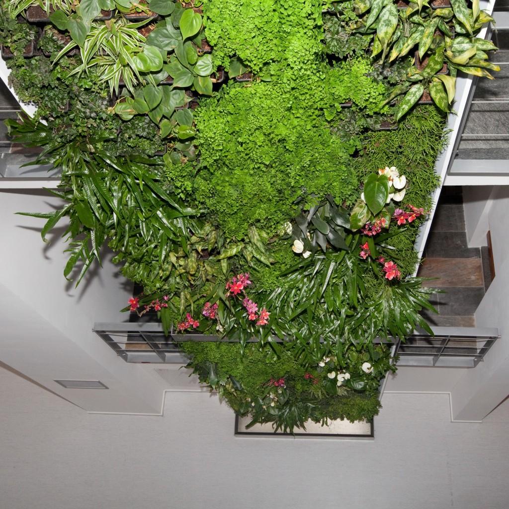 verticale-tuin-lunetzorg-eindhoven-kantoorpand-volledig-beplant-klimplanten-gevelrekken-8