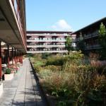 daktuin-bloeiende-bloesem-vasteplanten-appartementencomplex-ouderen-valkenswaard-2