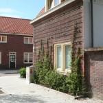 gevelrekken-philipsdorp-lei-klimplanten-vergroening-woonwijk-nestelruimte-vogeltjes-2