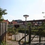 gezamelijke-moestuinen-drents-dorp-eindhoven-duurzaam-biodiversiteit-ecologie-21