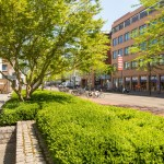 hotel-Pullman-Eindhoven-hospitality-hoogwaardige-aankleding-zakelijk-groen-2