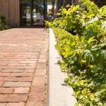 kantoortuin-herbestemming-kerk-jeugdzorg-duurzaam-groen-9