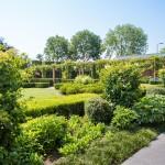 landelijke-tuin-vrijstaande-woning-Bergeijk-elk-seizoen-2