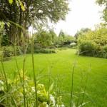 parkachtige-tuin-grote-natuurlijke-vijver-bloeirijke-vaste-planten-1