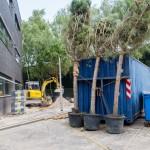 renovatie-kantoortuin-eindhoven-werken-in-het-groen-2