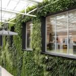 verticale-tuin-kantoorpand-venco-campus-eersel-hoogte-11m-lengte-30m-showroom-2